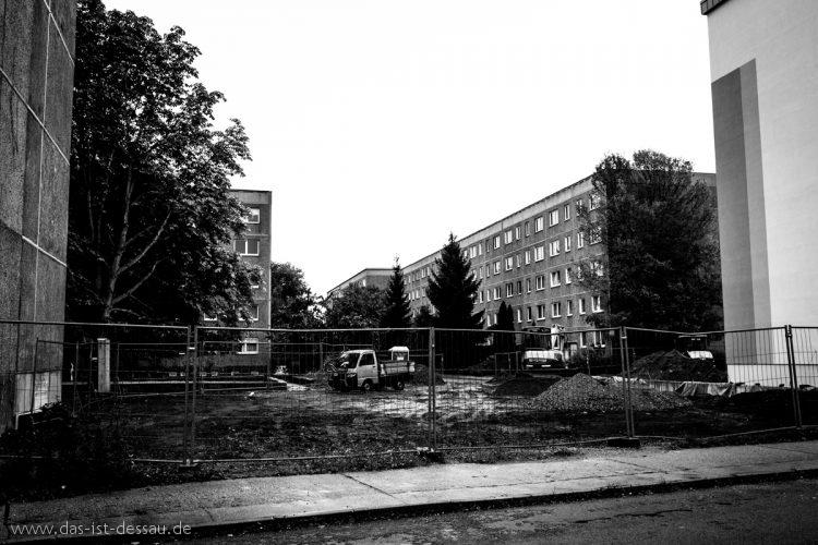 Dessau_07102016_dscf9138_jing_zhou